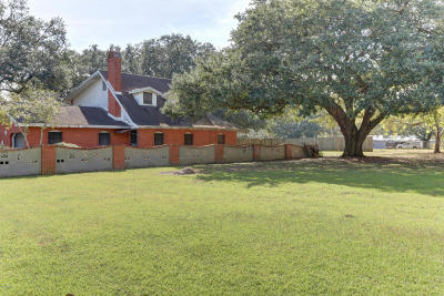 Lafayette Parish Single Family Home For Sale: 139 Robicheaux Road