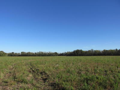 St Landry Parish Residential Lots & Land For Sale: Houston Richard
