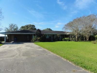 Single Family Home For Sale: 20395 Hwy 90 Service Road