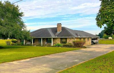 Carencro Single Family Home For Sale: 202 Cankton Road