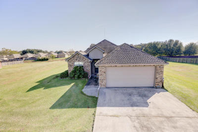 Single Family Home For Sale: 414 Summerfest Drive