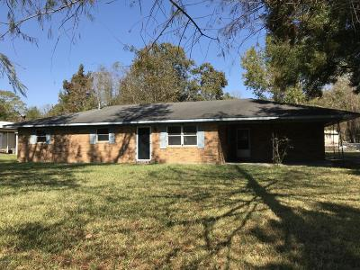 Single Family Home For Sale: 121 Daisy Lane