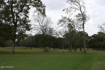 Iberia Parish Residential Lots & Land For Sale: 108 Eagles Nest