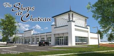 Lafayette Parish Commercial For Sale: 5910 Johnston Street