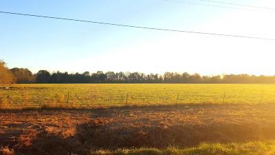 St Landry Parish Farm For Sale: Tbd Mouton Rd. Lot 7