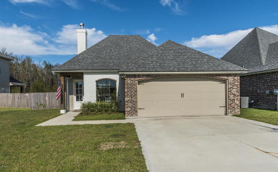 Lafayette Single Family Home For Sale: 103 Sleepy Brook Road