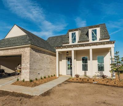 Broussard Single Family Home For Sale: 107 Old Road Drive