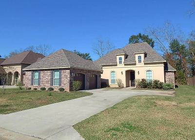 Single Family Home For Sale: 110 Hidden Ridge Drive