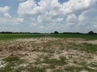 Acadia Parish Farm For Sale: Tanner Road