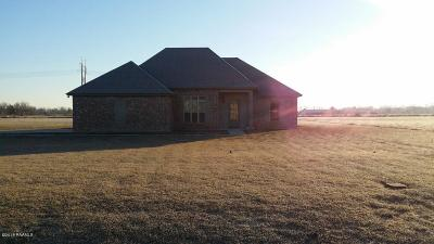 Single Family Home For Sale: 161 Critter Creek