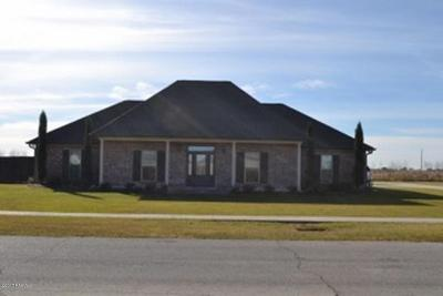 Vermilion Parish Single Family Home For Sale: 11406 Twin Oaks Circle
