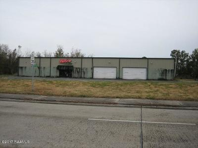 New Iberia Commercial For Sale: 617 Jefferson Terrace