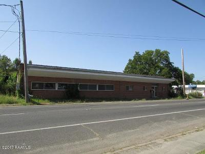 St Landry Parish Commercial For Sale: 1331 W Landry Street