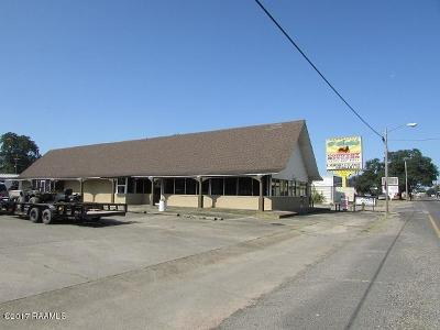 St Landry Parish Commercial For Sale: 1131 W Landry Street