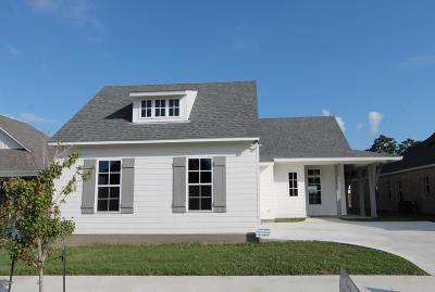 Breaux Bridge Single Family Home For Sale: 421 Evangeline Trail