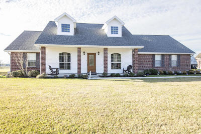 Carencro Single Family Home For Sale: 520 Kilchrist Road