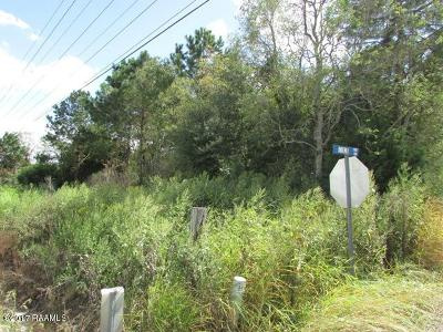 St Martinville, Breaux Bridge, Opelousas Residential Lots & Land For Sale: Tbd Hwy 104 & Mini Rd
