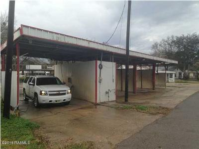 St Martin Parish Commercial For Sale: 1476 Henderson Hwy