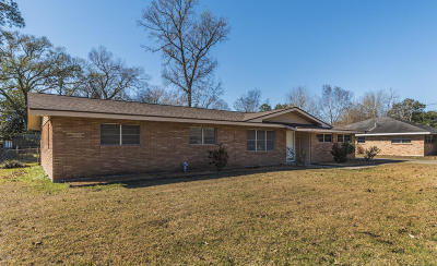 Single Family Home For Sale: 228 Grand