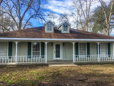 Church Point Single Family Home For Sale: 519 S Guidry Drive