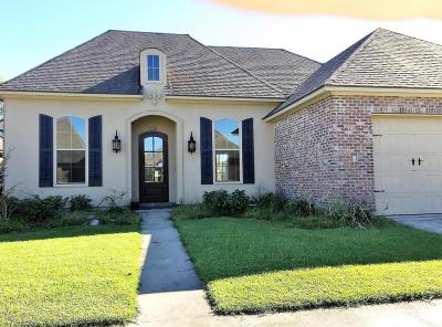 Copper Meadows Phase Iv Single Family Home For Sale: 113 Spring View