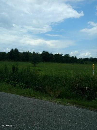Residential Lots & Land For Sale: Mermentau Road