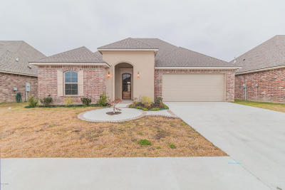 Meadow Bend Single Family Home For Sale: 202 Claystone Road