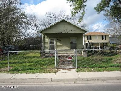 Jeanerette Single Family Home For Sale: 627 Canal