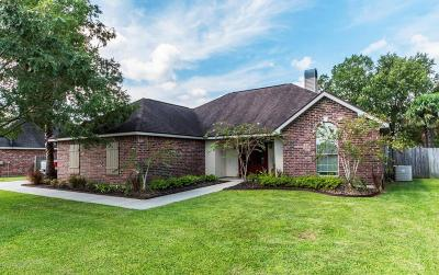 Single Family Home For Sale: 1414 S Morgan