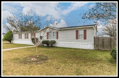 Youngsville Single Family Home For Sale: 104 Windsong Drive