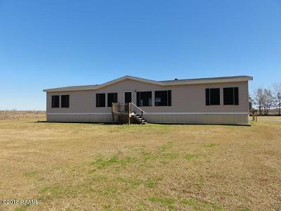 Gueydan Single Family Home For Sale: 12311 N Saltzman Road