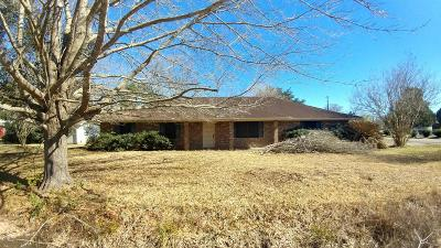 Leonville Single Family Home For Sale: 140 St Leo Street