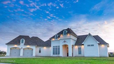 New Iberia Single Family Home For Sale: 316 Sugartrace Lane