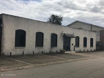 Lafayette Parish Commercial For Sale: 201 Wilson