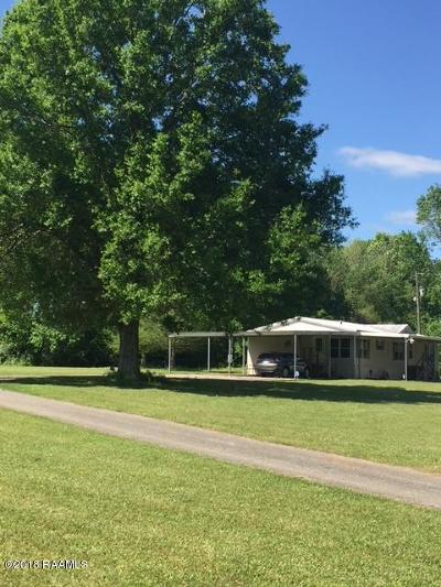 Carencro Single Family Home For Sale: 420 Magnolia Farms Road Road