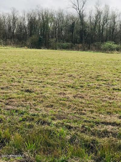 St Martin Parish Residential Lots & Land For Sale: 2320 Coteau Rodaire Hwy. Lot Par 2