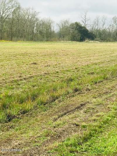 St Martin Parish Residential Lots & Land For Sale: 2320 Coteau Rodaire Hwy Lot Par 3