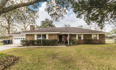 New Iberia Single Family Home For Sale: 607 Jacquiline Drive