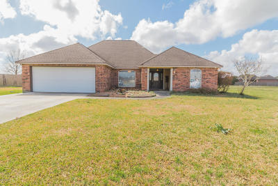 Vermilion Parish Single Family Home For Sale: 9601 Belle Place Circle