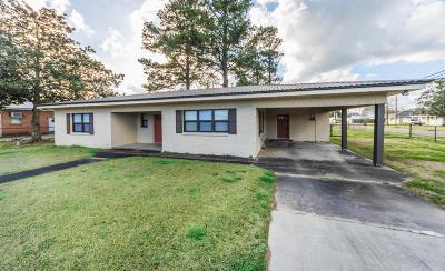 Arnaudville Single Family Home For Sale: 397 Main Street