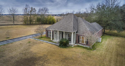 New Iberia Single Family Home For Sale: 610 Interlude Road