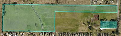 Youngsville Farm For Sale: Guillot