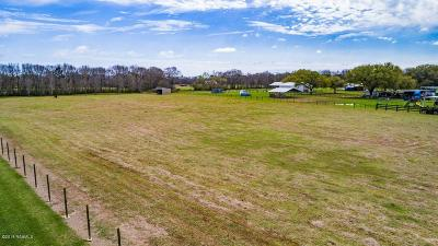 Iberia Parish Farm For Sale: 933 Austin Road