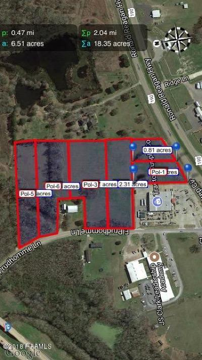 St Landry Parish Residential Lots & Land For Sale: 1523 E Prudhomme Lane Road