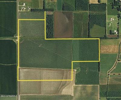 Farm For Sale: 3601 S Richfield