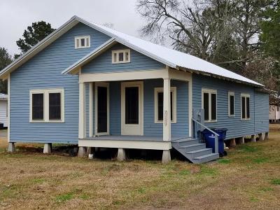 Arnaudville Single Family Home For Sale: 314 Olive St