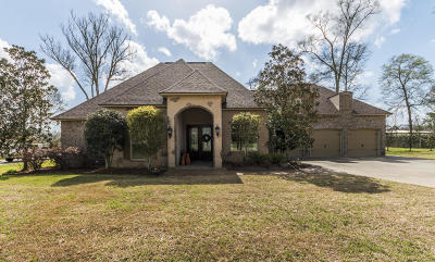 Sunset Single Family Home For Sale: 208 Morning Mist Drive