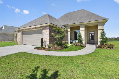 Broussard Single Family Home For Sale: 201 Old Road Drive