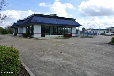 Commercial For Sale: 3101 E Hwy. 90