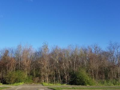 Lafayette Residential Lots & Land For Sale: Louisiana Avenue